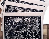 6 card set Apapane, Native Hawaiian forest bird