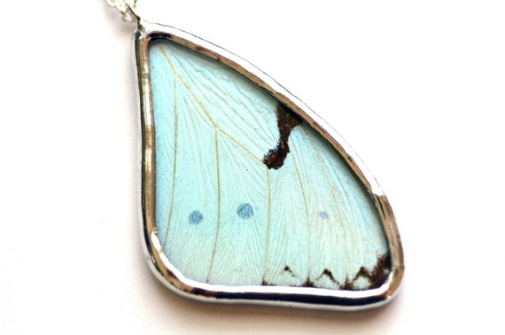 Real Butterfly Wing Necklace. Real insect wing pendant. Mint Morpho. Real butterfly wing pendant. Soldered necklace. Insect jewelry.