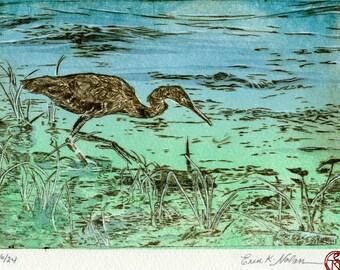 Blue Heron Fishing on the Shoreline