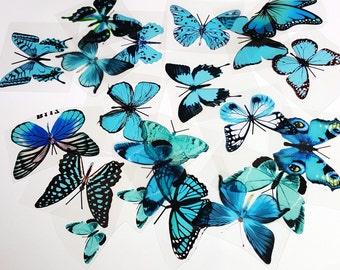 E26 Aqua UNCUT Butterfly pack - 20 per pack - scrapbooking, card making, crafts