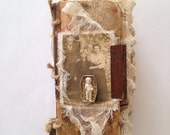 Altered Book - Fly