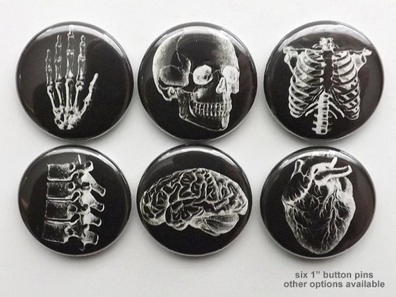 Anatomy Pinbacks button pin badges black white human anatomical heart graduation doctor male nurse stocking stuffer magnet novelty gift goth