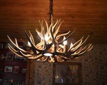 32 inch Real Mule Deer Chandelier with Down Light, 7 Elk antler covered light sockets.