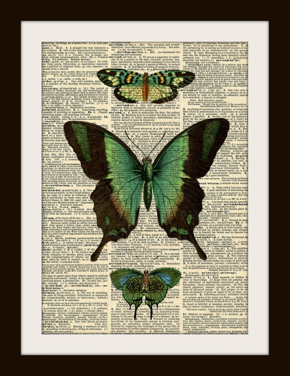 Green Butterfly Dictionary Art Print 8x10 vintage insect illustration
