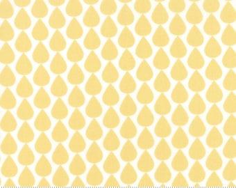 Sundrops (29013 12) Raindrops Yellow by Corey Yoder