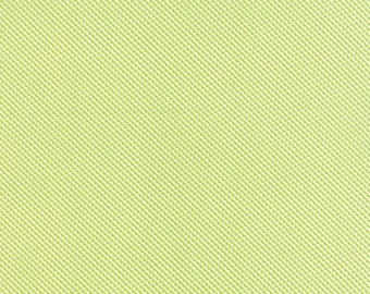 Little Ruby Little Sundae Light Green 55132 14 Yardage by Bonnie and Camille for Moda