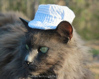 Cat Hat - Railroad Engineer - American Engine Driver Hat - Train Operator Pet Hat Photo Prop