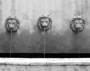 Black & White Photography Fountain Print, Bathroom Wall Decor, Lion Fountain Photography, Southern Art, Three Lions Print, Black White Print