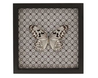 Framed Butterfly Damask Insect Art Display