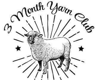 3 Month Yarn Club Subscription - Hand Dyed Sock Yarn - SW SOCK 80/20
