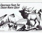 Greetings from the Great Northwest Vintage Postcard -- Artist Signed, Hoke Denetsosie (Unused)