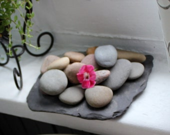 Slate and Lake Stone Centerpiece , Instant Beach Collection , Green Living , Natural Home Decor