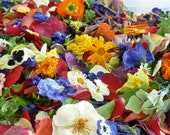Dry Flowers, Wedding Confetti, Craft Supply, Daisy, Pansy, Rose, Flower Petal, Pot Pourri, Sachet, Viola, Confetti, Real Flower, 1/2 US cup