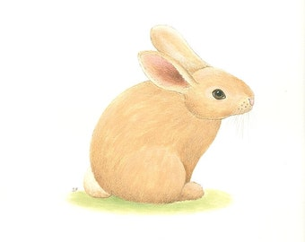 "Baby RABBIT Painting  Animal Art  Baby Bunny painting Original 8 x 10"" by Sharon France  Nursery Art  Illustration Woodland Nursery Wildlife"