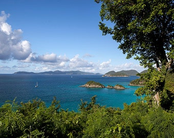 Beach Wall Art, Fine Art Print, Caribbean Art, St John USVI, Tropical Decor, Travel Photography, Wanderlust, Turquoise Home Decor
