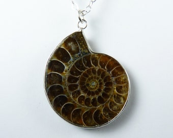 Unusual Genuine Fossil Necklace, Large Espresso Brown, Coffe Brown, Caramel, and Taupe Ammonite Fossil Pendant, Sterling Silver Chain