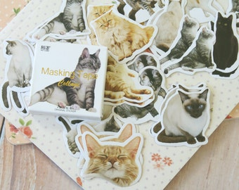Cats Daily Life Stickers cartoon animal shapes deco stickers set