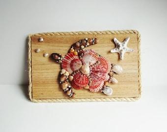 Seashell Turtle,  Wall Hanging, Cedar Board