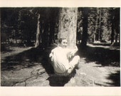 Hilarious Photo of a Man Hugging or Humping a Tree Vintage Photo M12503