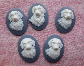 Beautiful oval gray and white tone Mans Best Friend plastic cameos.  Lot of 5 cameos.