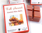 FALL HARVEST Wax Melt - 6 breakaway cubes - clove, allspice, kisses of cinnamon and vanilla sugar - soy blend - clamshell type - 3 oz