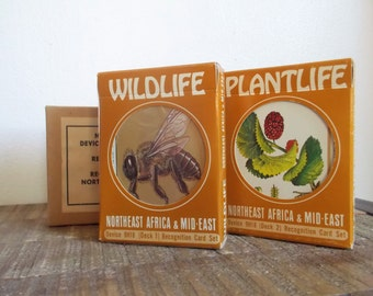 1978 Military Issue 9H18 NE Africa Mideast Wildlife Plantlife Study Cards Kit