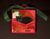 Personalized Black Cat Christmas Ornament- Add Your Cat's Name-Black Cat in A Box Hand Made Wooden Ornament