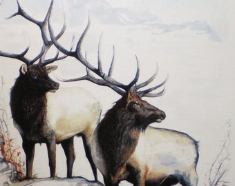Aceo Art Trading Card Miniature Picture Wildlife Elk Antler Hunting Watercolor