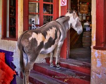 Wild burro, donkey photo, Oatman AZ, burro photograph,  black and white, sepia, southwestern decor, donkey art, western decor, long ears