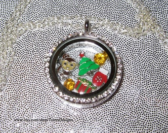 Animal Crossing New Leaf Toy Day Floating Story Locket Pendant Necklace Custom made OOAK One of a Kind by TorresDesigns Ready To Ship