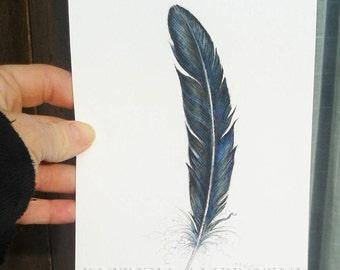Original 5x7 Watercolour Feather Study No.20. NOT A PRINT ..Original Painting,fine art-