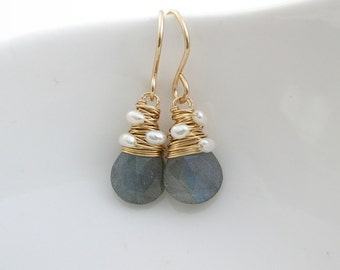 Labradorite Briolette Drop Earrings