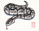 Ball Python Earrings - Hand Drawn Shrink Plastic and Sterling Silver