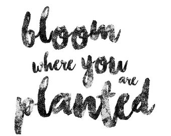 Bloom Where You Are Planted, Printable Wall Art, Typography Print, Minimal Black & White