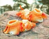 Crocodile Stitch Goldfish Boots (Adult Size)