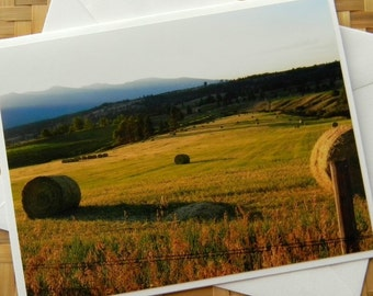 Hayfield in Evening Sun Photo Note Card - Rural Photography Montana