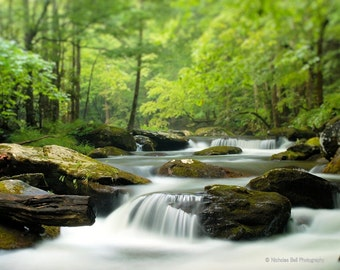 landscape photography, nature photography, stream, mountain stream, woodland photography, Smoky Mountains, Appalachian Mountain Stream
