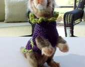 Pet Ferret Sweater  Small Hand crocheted  8 inches long GIFT WITH PURCHASE
