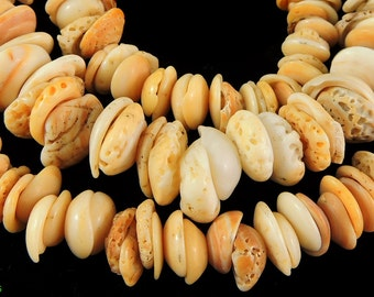 Conus Shell Beads Matched Mauritanian Graduated Africa 98043