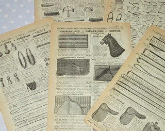 Antique French Catalog Pages Yellow Aged Paper Ephemera Horse Double Sided - Vintage (lot R)