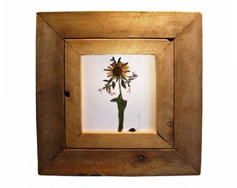 Pocahontas--- Pressed Flowers Framed in Pine