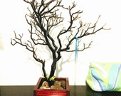 "15"" Red Jewelry Tree Accessory holder / Jewelry Organizer"