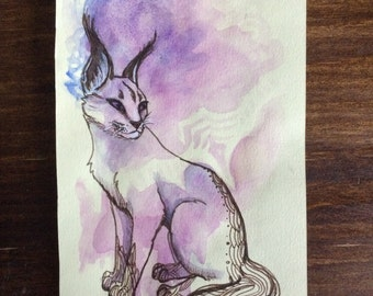 Caracal Cat original watercolor illustration abstract painting drawing