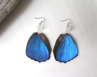 Blue Butterfly Wing Earrings, Blue Wing Earrings,  Nature Earrings, Morpho Menelaus