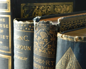 Antique Book Collection. Shades of Blue. Instant Library. Literature and Poetry. Home Decor.