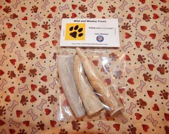 3 Organic Small Elk Antler Dog Chew (Lot D2)