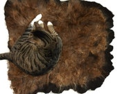 Wool Cat Bed Sheep-friendly Felted Fleece Rug Pet Bed - Icelandic Moorit - Supporting Small Farms of The United States - Ready to Ship