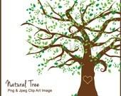 Family Tree Clipart, Clipart Beautiful Tree, Clipart Elm Tree, Maple Tree Clipart, Digital Scrapbook Family Tree, Green Tree Oak Tree