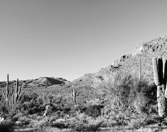 Mountain Photography Print Fine Art Arizona Saguaro Cacti Black and White Southwest Desert Rustic Winter Landscape Photography Print.