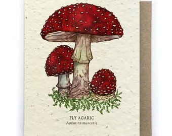 Red Fly Agaric Mushroom Greeting Card - Plantable Seed Paper - Blank Inside